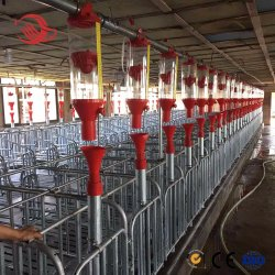 最新の農場カスタマイズ型高品質オーガーディスクチェーン自動給紙システム ブタの農法装置