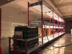 Nieuw Hydroponic Dripping Irrigation Vertical Grow-systeem met LED Grow Licht voor het planten van Indoor en Container Farm