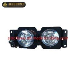 Leveren Sinotruk HOWO onderdelen Wg9719720006 Combination Lights