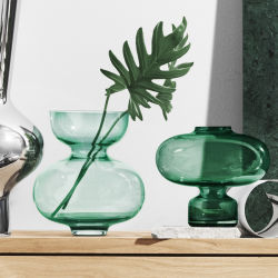 Home decoration Crafts Transparent Glass Flower vas花瓶 Hydroponic Vasen