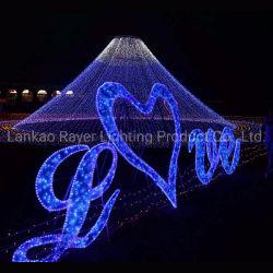 Сторона Customzied ночь светодиодный символ освещения для использования вне помещений оформление