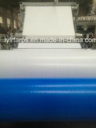 Китай PE брезент брезент из полиэтилена, на заводе в мастерской, PE мешок погрузчик, полимерная мешок