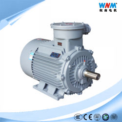 L'Yb3 ATEX 380/660V IE2 IP55 AC moteur électrique d'induction de la preuve d'explosion de mine de charbon Ex Di usine dangereuses Ex dii Catégorie A B T1~T4 Yb3-200L1-2 30kw