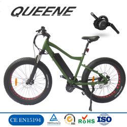 뚱뚱한 타이어를 가진 Queene/Bafang BBS02 750W 1000W 중앙 모터 전기 자전거