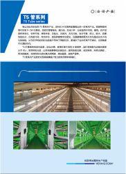 Hのタイプ家禽のケージのためのT5 LEDの管シリーズ