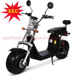 E-Bici grassa del pneumatico della bici elettrica della spiaggia dell'uomo del motore della spazzola di 60V 1500W