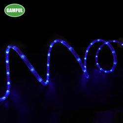 rosso esterno di 7.3m/verde/indicatore luminoso di striscia blu dell'indicatore luminoso LED della corda di RGB 3528 SMD RGB LED
