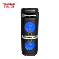 Temeisheng Feiyang горячая продажа хорошего качества два 10дюйма DJ активный громкоговоритель PA караоке для портативных аудио устройств Fg210-01