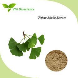 Usine BPF pur et naturel extrait de feuille de Ginkgo biloba et antibactérienne Anti-Inflammatory