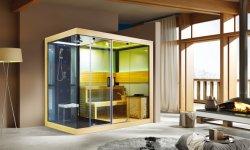 Monalisa Meilleur Design Fashion Sauna Hammam douche cabinet (M-6032)