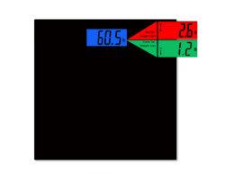Gewicht-Vergleichs-Schuppe mit dem tatsächlichen Gewicht verglichen mit Letzt-Satz-Gewicht