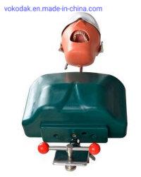 人体摸型のPhantomhead歯科型の口頭シミュレーションの方法システム