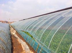 UV Stabilisé serre agricole une pellicule de polyéthylène