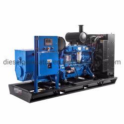 250kw 312.5kVA Puissance électrique silencieux Groupes électrogènes diesel Power &