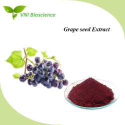 La certificación ISO 100% Natural Extracto de semilla de uva para el antienvejecimiento