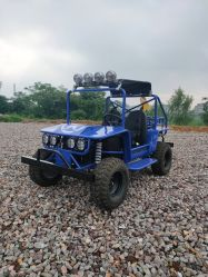 China 150cc Kids off Road Go Karts, 2 Seater Mini Buggy Go Kart, Mini Buggy