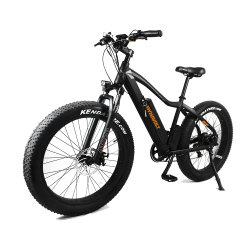 Ciclo elettrico ad alta velocità da 750 W con batteria al litio di nuovo design