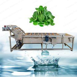 산업 식물성 청소 기계 과일 기포 세탁기