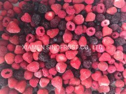 IQFの混合された果実、フリーズされた混合された果実、IQFの果実、フリーズされた果実、IQFのフルーツ、フリーズされたフルーツ