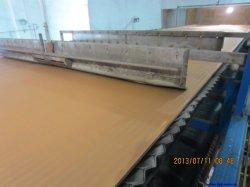 Фильтр Фильтр ремня ткань для ддг вакуумной ленты нажмите Фильтр