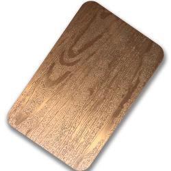 La textura en relieve de hojas en forma de panal de acero recubierto de Color 304 Placa de acero inoxidable