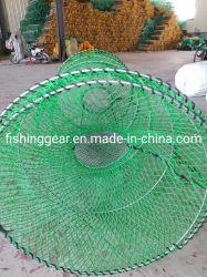 Presa nobile netta priva di nodi dei pesci del PE di colore verde per i pesci della cattura