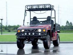 톱 라이트를 가진 500cc 2seats 골프 Kart UTV