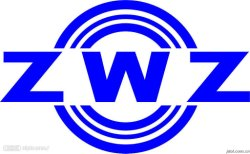 Cuscinetto a rulli cilindrici Zwz Nu204e