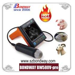 Ultraschall-Scan für Vieh, Begleiter-Tiere, Veterinärultraschall-Scanner, Wiedergabe-Ultraschallmaschine,