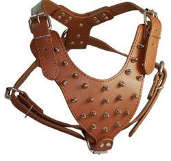 Chien de la chaîne en cuir clouté laisse, difficile à porter