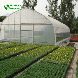Мини/мелких сельскохозяйственных Single-Span туннеля/дуги пластиковую пленку выбросов парниковых газов для гидропоники растущее