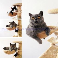 Populäres langlebiges Gut Sisal-Deckte kletternden Kratzer-Haustier Scratcher Hängematten-Möbel-Aufsatz-Katze-Baum für Kätzchen, Katzen und Haustiere ab