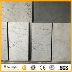 /Poli perfectionné/Ligne Antiblasted fourmis Decorataion Bluestone basalte pour montage mural