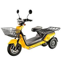 1000W CEE adulto de dos motores de 3 ruedas Moto triciclo eléctrico para transporte de carga y la entrega de alimentos