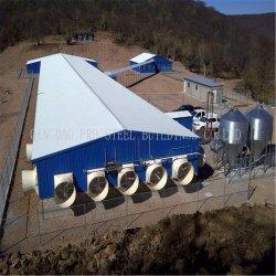Het geprefabriceerde Huis van de Laag en Van de Braadkip met Auto het Voeden Systeem/het Drinken Systeem