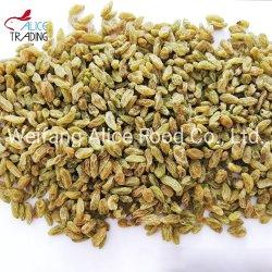 Natuurlijke Groene Rozijnen Xinjiang