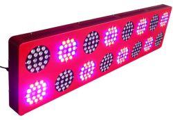 반사체 600W LED Grow Light Growth Veg Flower Switchable LED Grow Lamp Panel