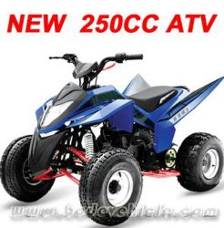 新しい250CC ATV、Quad (MC-383)