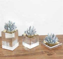 Druzyの自然なガラスクラフト装飾的なギフトセットのための北欧様式の概要デザイン