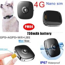 Inseguitore di GPS del cane di animale domestico di 2020 nuovo più piccolo 4G Waterprof con la grande batteria Pm04