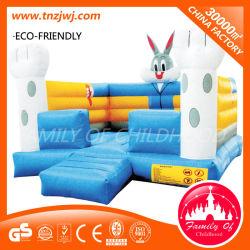 Kommerzielle Amusement Rides Bouncy Castle Slide Inflatable Toy