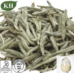 De zuivere Natuurlijke Witte Witte Thee Polyphenls 25%-95% van het Uittreksel van de Thee