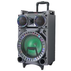 """10 """" 단계 오디오 스피커 증폭기 직업적인 오디오 사운드 박스"""