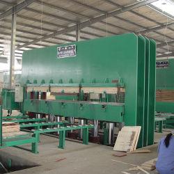 Hot la vente de presse à chaud pour la fabrication de placage de la machine