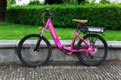 6 цветов литиевой батареи высокой мощности элегантный город Mountian электрический велосипед для леди