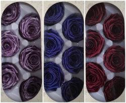 6 conserva las Rosas en colores metálicos que duran 5 años
