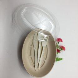 Biodegradables de bagazo de caña de azúcar caliente contenedores de alimentos de la placa de alimentos de forma ovalada con tapa transparente