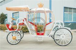 Het Europese Vervoer van het Paard van de Pompoen van de Stijl Elektrische Koninklijke voor Verkoop