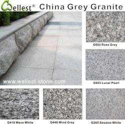 G602 G603 G655 G633 de Lichte en Donkere Grijze Steen van het Graniet voor het Bedekken van de Vloer en de Bekleding van de Muur
