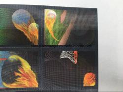 공장 맞춤형 홀로그램 명함 3D 렌즈